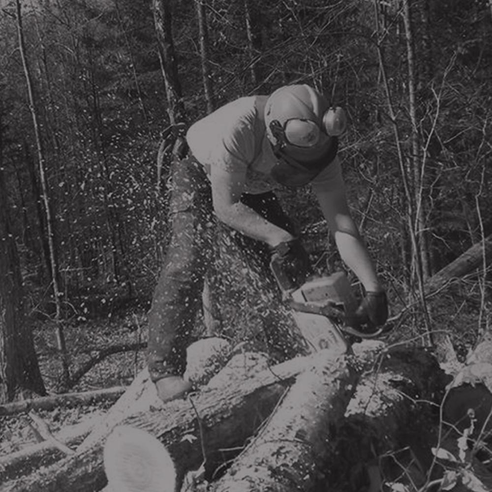 Coupe de bois professionnel Laurentides